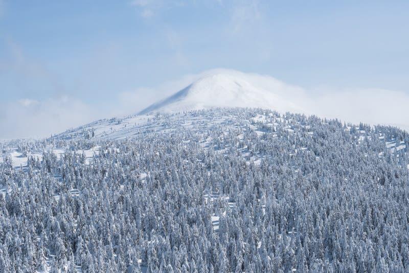 Winterlandschaft mit Bergspitze im Schnee und in den Wolken lizenzfreie stockfotos