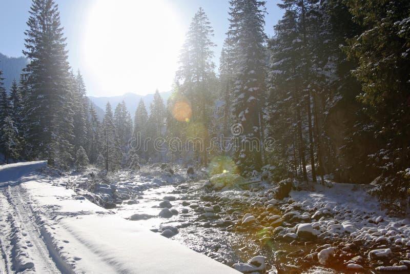 Winterlandschaft mit bunten Blendenflecken in Tatra-Bergen, Polen lizenzfreie stockfotos