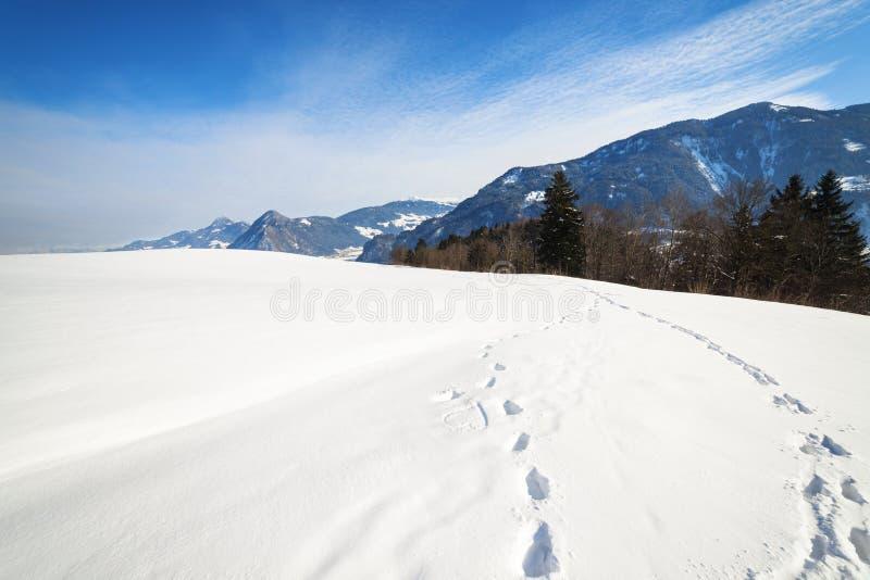 Winterlandschaft mit Fuß druckt im Schnee stockfoto