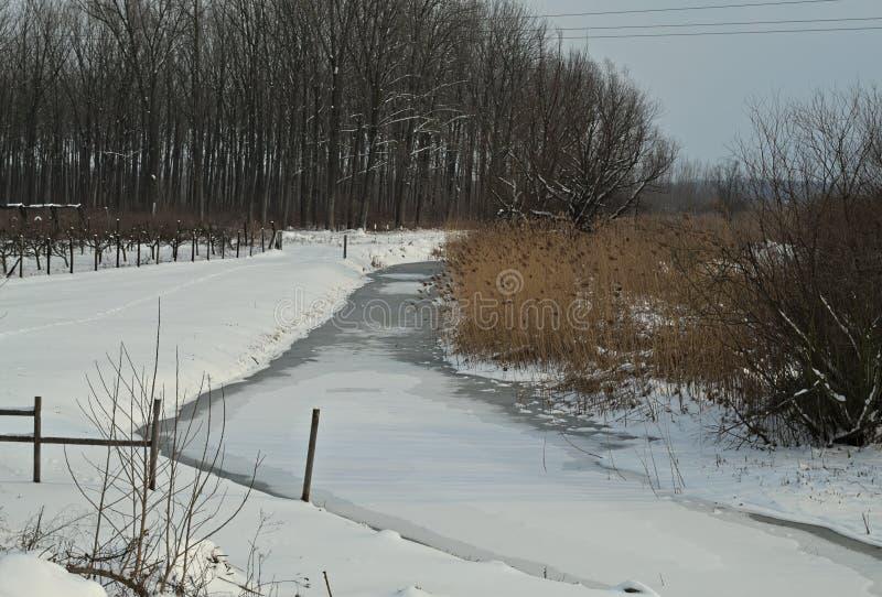 Winterlandschaft mit gefrorenem Kanal und schneien ganz herum stockfotografie