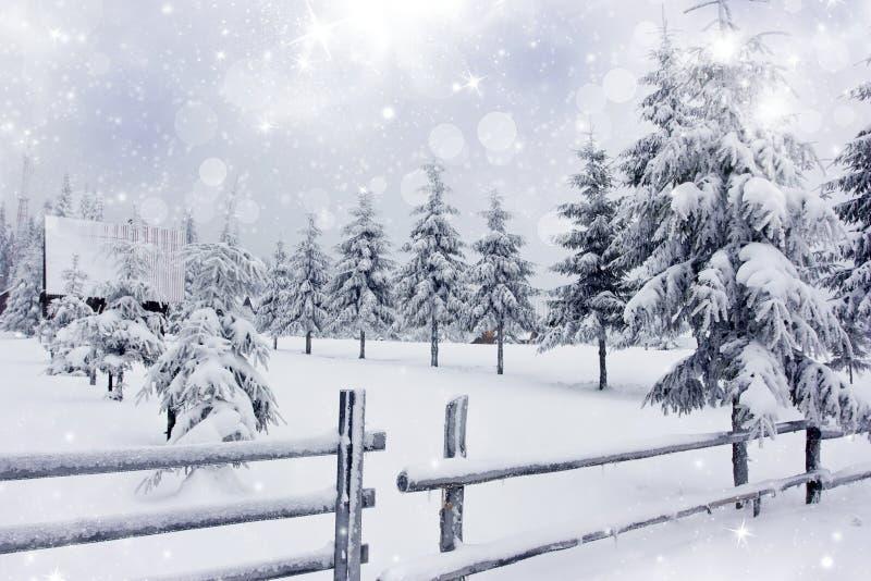 Winterlandschaft mit schneebedecktem Tannenbaumanzeigenzaun lizenzfreies stockbild