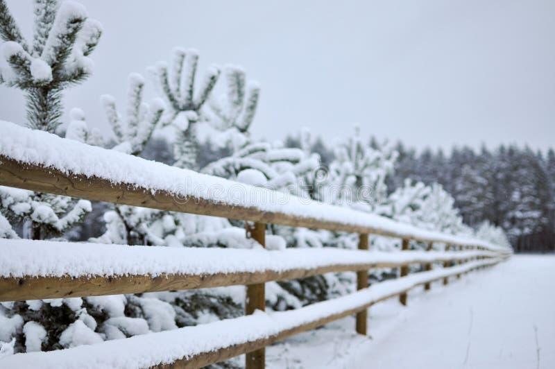 Winterlandschaft mit schneebedecktem Wald und einem Bretterzaun stockfotografie