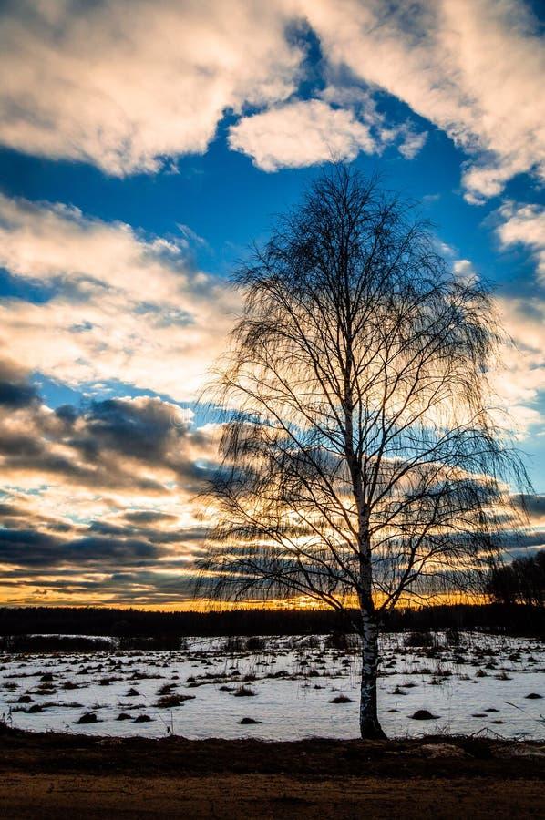 Winterlandschaft in Mittelrussland lizenzfreie stockfotos