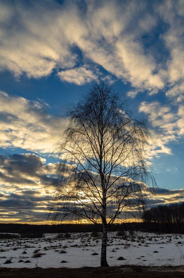Winterlandschaft in Mittelrussland stockbilder