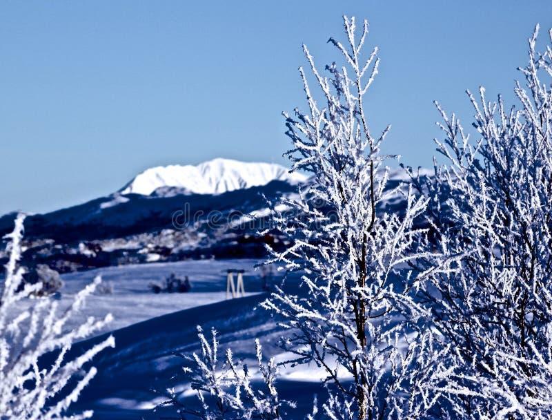 Winterlandschaft in Norwegen lizenzfreies stockbild