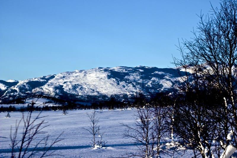 Winterlandschaft in Norwegen stockbild