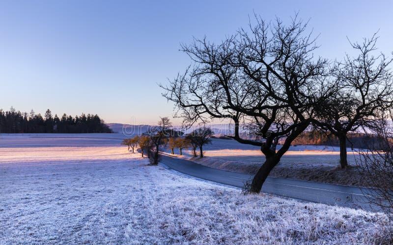 Winterlandschaft am Sonnenaufgang und am Schattenbild von Bäumen stockfotografie