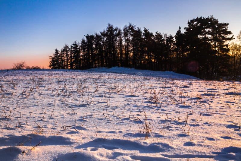 Winterlandschaft am Sonnenuntergang und an den Schattenbildern von Bäumen stockfotografie
