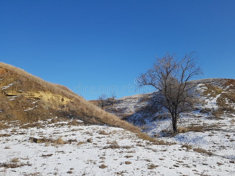 Winterlandschaft von Hügeln und von Baum lizenzfreies stockbild