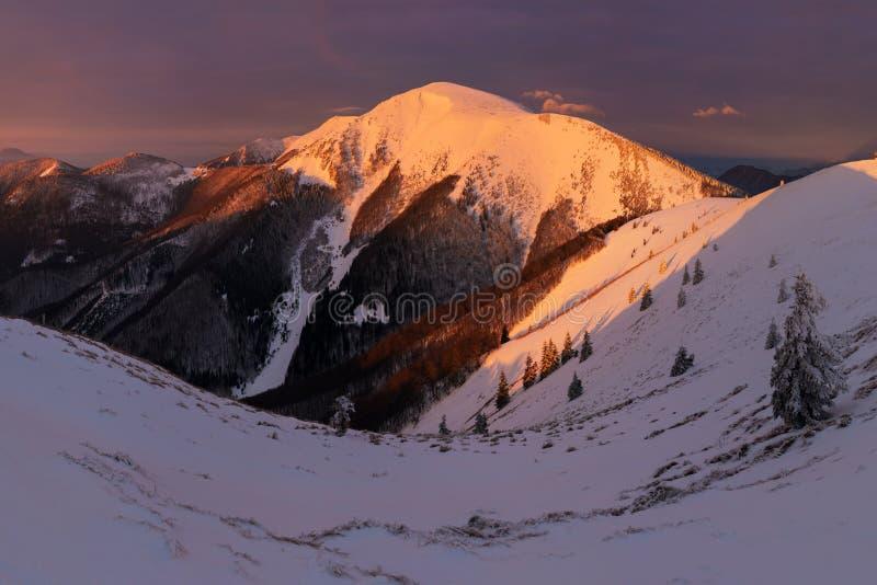 Winterlandschaft von hohen Tatra-Bergen auf kleinem kaltem Tal nach neuen Schneefällen Hohes Tatras, Slowakei windig und kühles W stockbilder