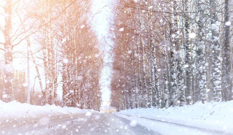 Winterlandschaftsschnee umfasste Ausdehnungen Ein Park im Winter herein lizenzfreie stockbilder