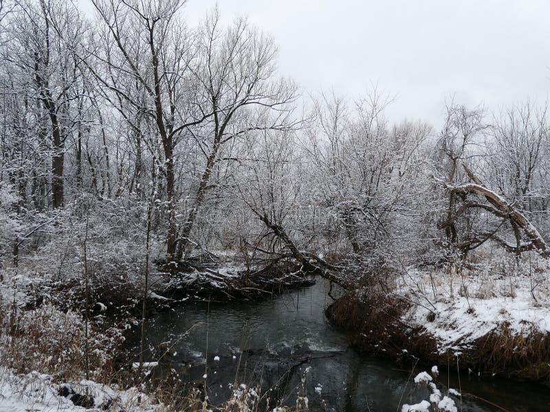 Winterlandschap royalty-vrije stock afbeelding