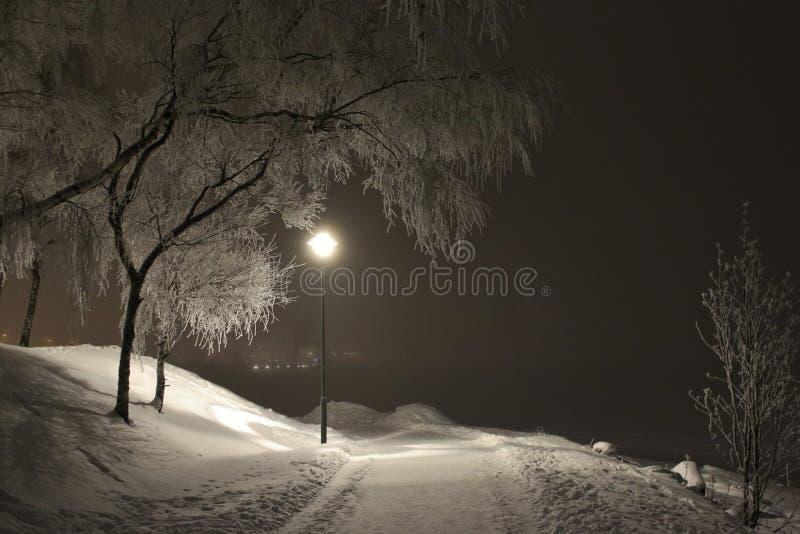 Winterlicher Weg weg lizenzfreie stockfotos