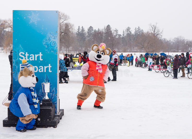 Winterlude in Ottawa, Ontario, Kanada 2014 - Bett-Rennen auf dem IC stockbilder