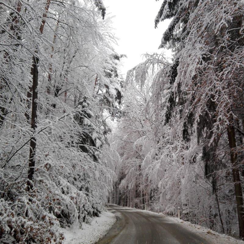 Wintermärchenland stockfotografie