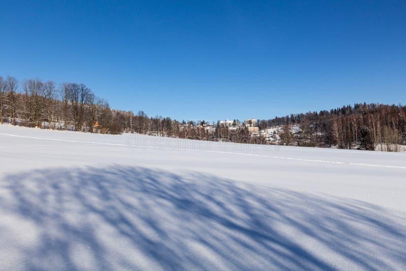 Wintermärchenlandhintergrund Eisiger sonniger Tag Gebirgs-in gezierten Wald-Snowy-Bäumen und im blauen Himmel lizenzfreie stockfotografie