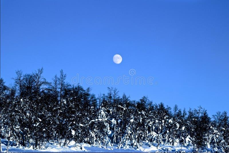 Wintermond stockfotos