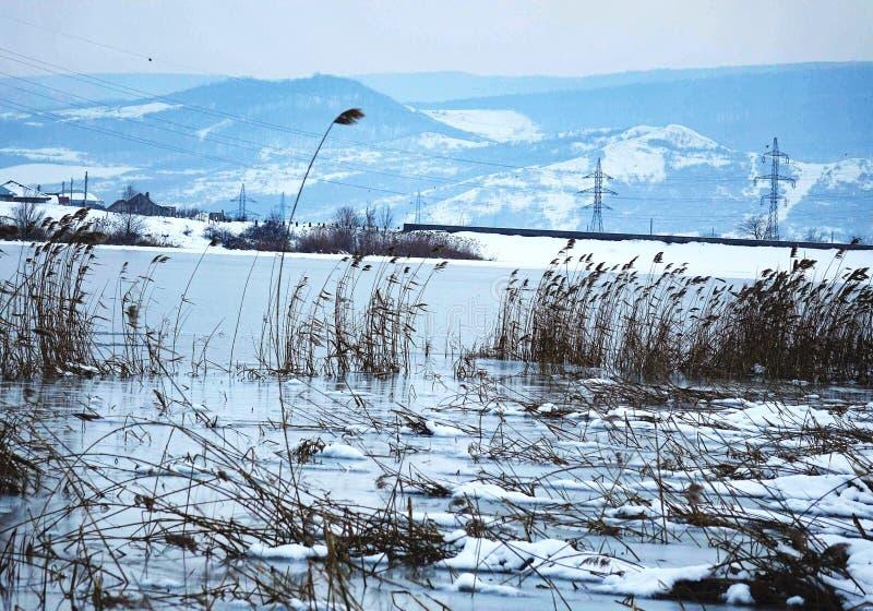 Wintermood royaltyfria foton