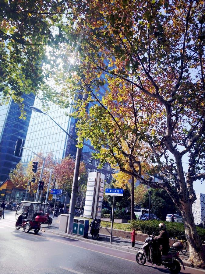 WinterMorining》 för RealChina--UrbanCityShanghai5-《, arkivfoton