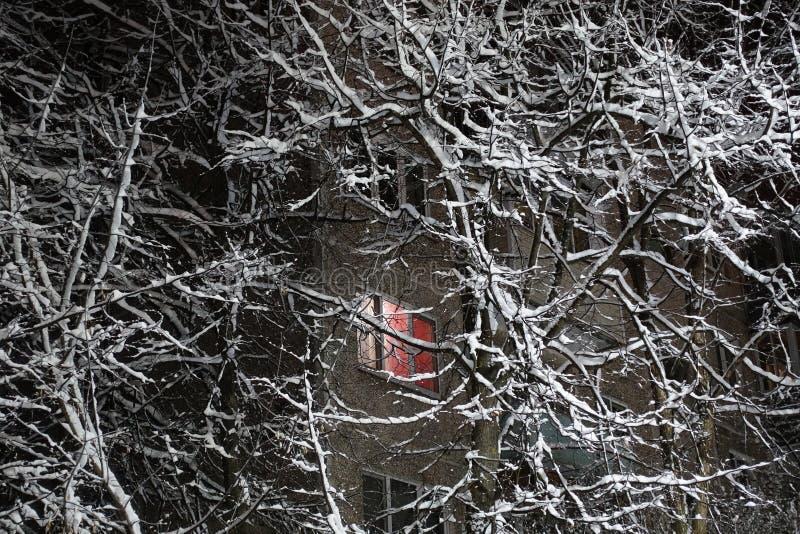 Winternacht Bäume sind schneebedeckt In einem mehrstöckigen Gebäude glänzt das Fenster der Wohnung Russland stockfotos