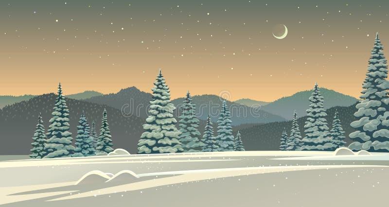 Winternachtlandschaft mit Schnee bedeckten Bäumen vektor abbildung