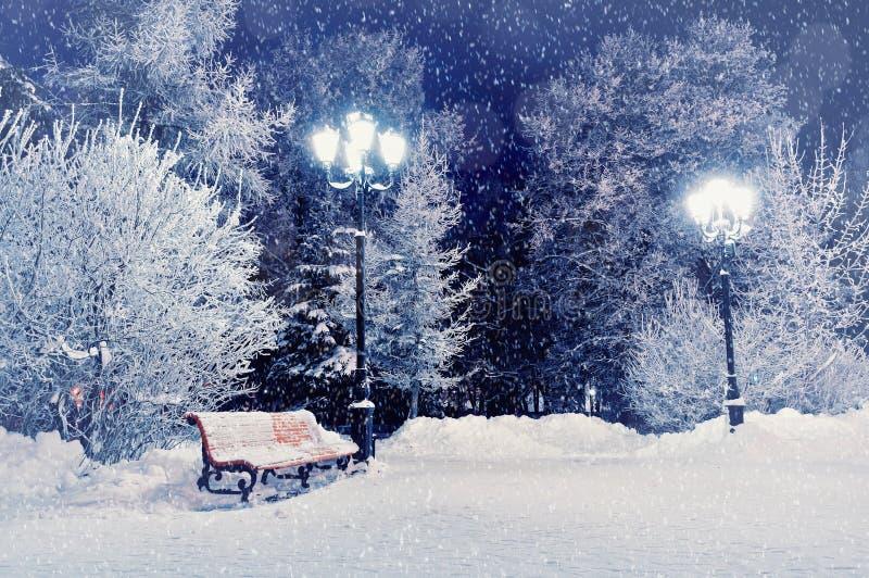Winternachtlandschaftsszene des Schnees bedeckte Bank unter Bäumen und Lichtern des verschneiten Winters lizenzfreie stockfotos