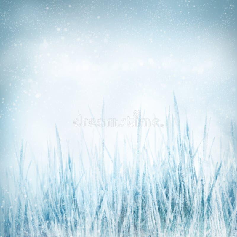 Winternaturhintergrund mit gefrorenem Gras lizenzfreie stockfotos