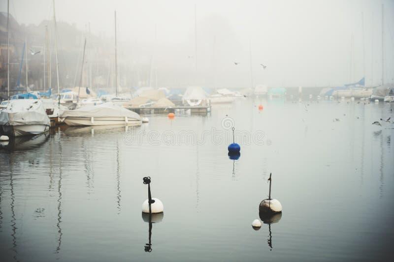 Winternebel auf Genfersee stockfotografie