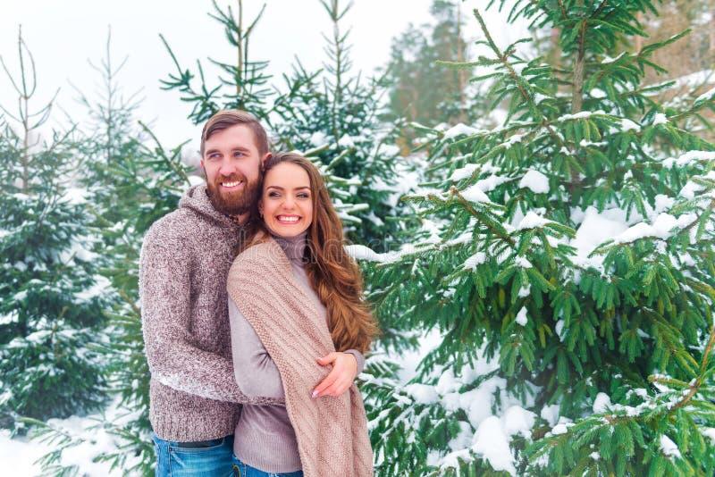 Winterpaare, die Becher gegen Weihnachtsbaum halten lizenzfreies stockfoto