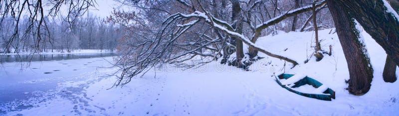 Winterpanorama stockfoto
