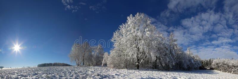 Winterpanorama stockfotografie