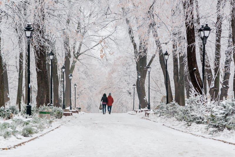 Winterpark bedeckt mit Schnee und Reif stockfoto