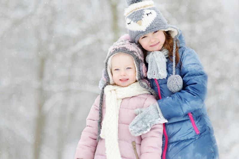 Winterpark mit zwei lustiger entzückender kleinen Schwestern stockfoto