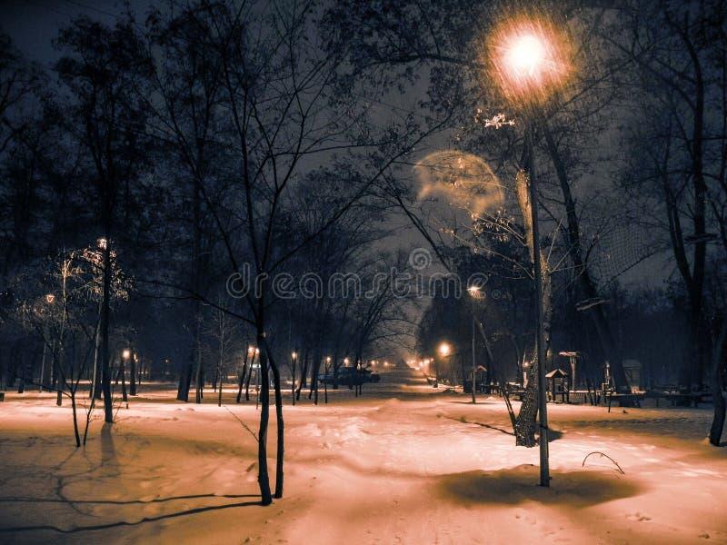 Winterpark nachts Schneefälle und orange helle Laternen stockfoto