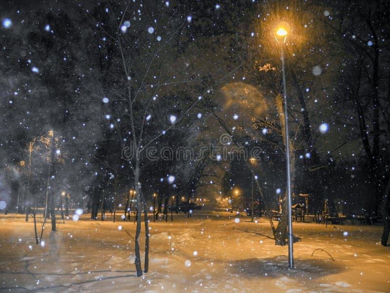 Winterpark nachts Schneefälle und orange helle Laternen lizenzfreie stockfotografie