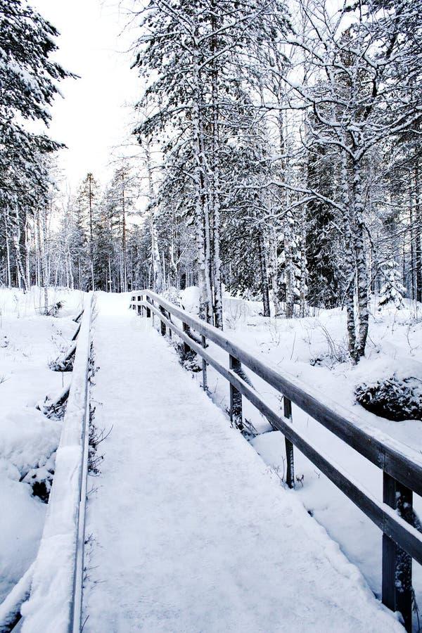 Winterpfad stockbilder