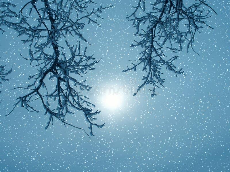 Winterphantasie stockbild