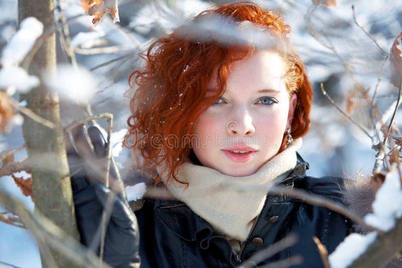 Winterportrait einer schönen Frau stockbild