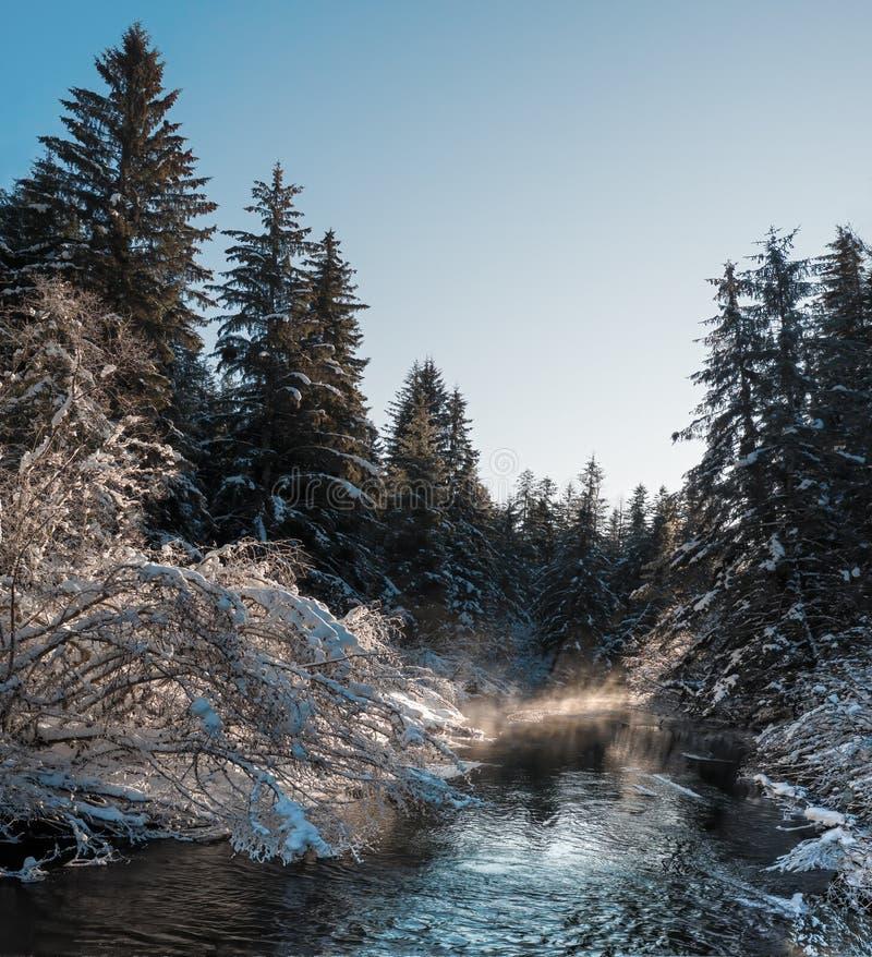 Winterrivierbedding met zon royalty-vrije stock fotografie