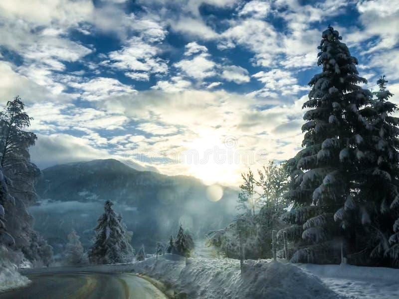Winterroad royalty free stock photo