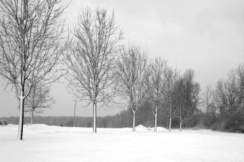 Download Winters Day stock image. Image of cold, wintry, line - 13161179