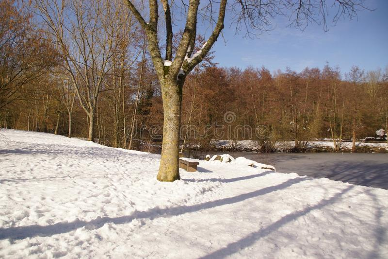 Winters landschap - het Landschap werd behandeld met sneeuw in bos royalty-vrije stock foto's