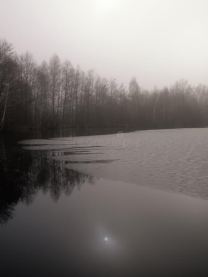 Winters meer in platteland royalty-vrije stock afbeeldingen