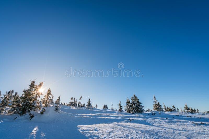 Winterscape гор Karkonosze стоковые фотографии rf
