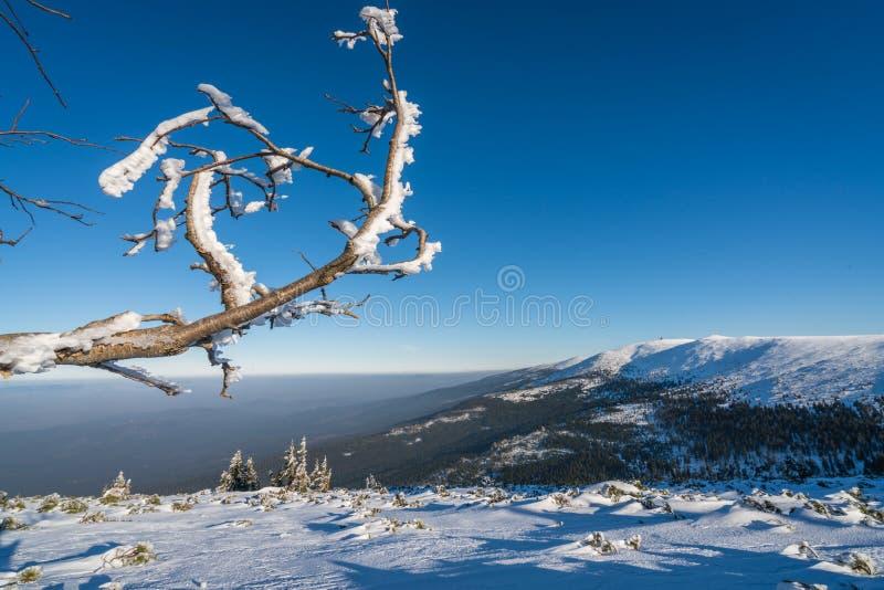 Winterscape гор Karkonosze стоковая фотография rf