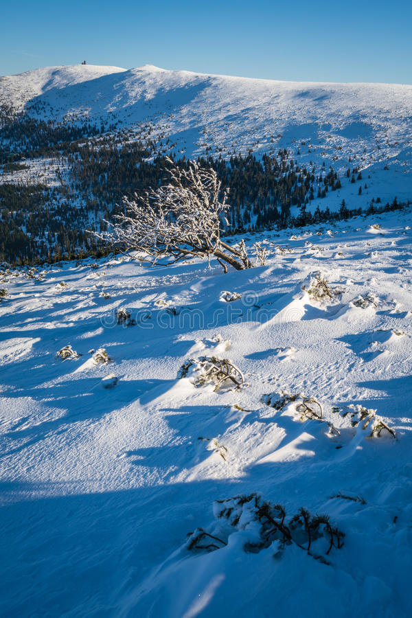 Winterscape гор Karkonosze стоковые изображения