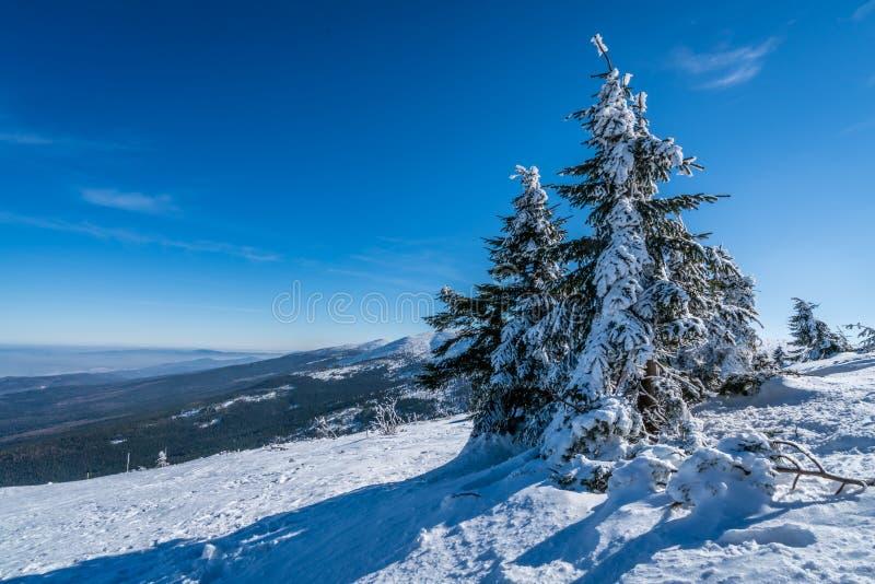 Winterscape гор Karkonosze стоковое изображение