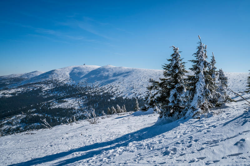 Winterscape гор Karkonosze стоковое фото rf