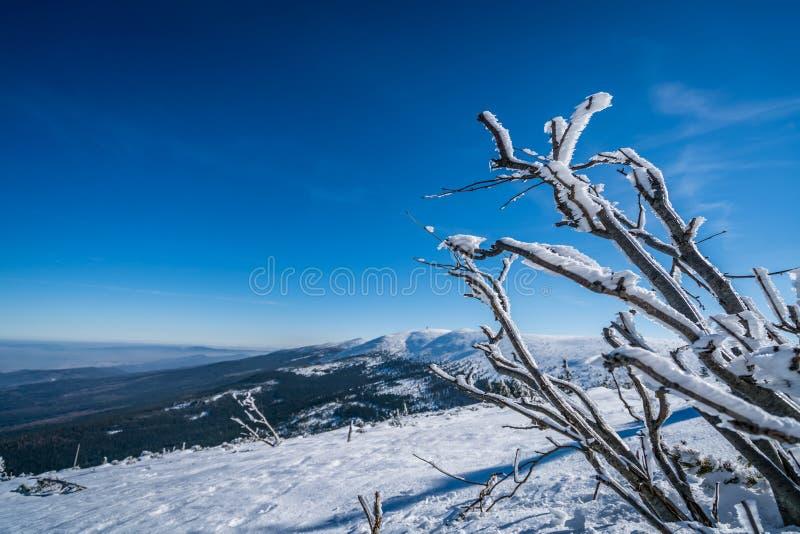 Winterscape гор Karkonosze стоковые изображения rf