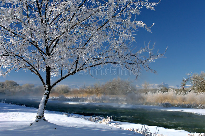 Winterscape stockfoto